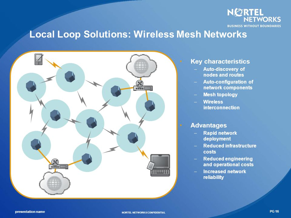 Local Loop Solutions: Wireless Mesh Networks