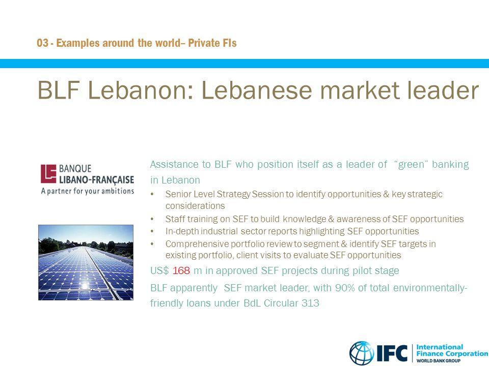 BLF Lebanon: Lebanese market leader