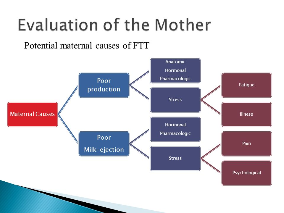 Evaluation of the Mother