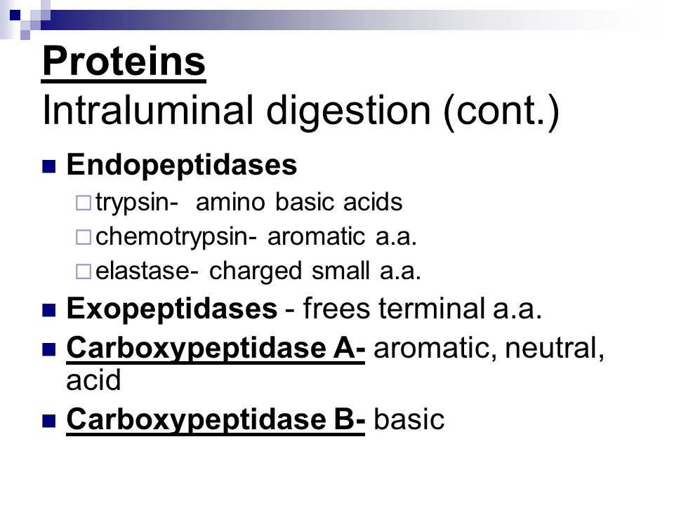 Proteins Intraluminal digestion (cont.)