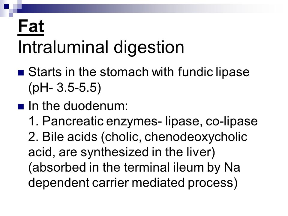Fat Intraluminal digestion