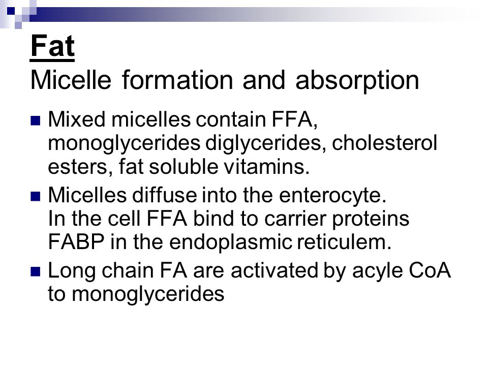 Fat Micelle formation and absorption