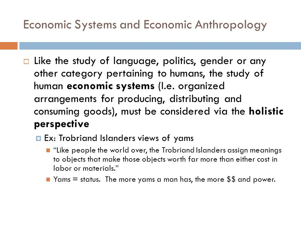 Economic Systems and Economic Anthropology