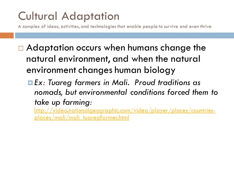 Cultural Adaptation A complex of ideas, activities, and technologies that enable people to survive and even thrive