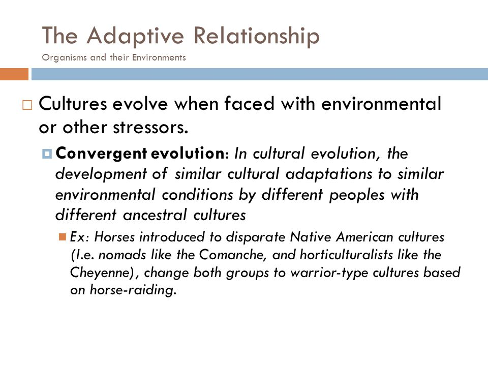 The Adaptive Relationship Organisms and their Environments