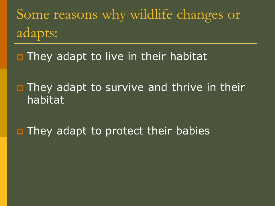 Some reasons why wildlife changes or adapts: