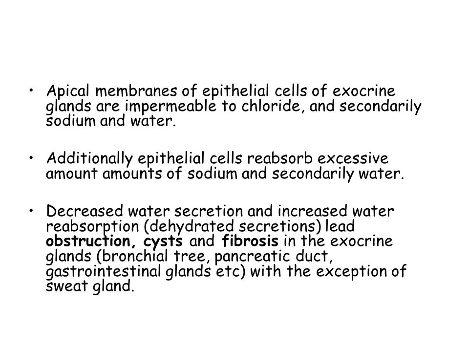 Apical membranes of epithelial cells of exocrine glands are impermeable to chloride, and secondarily sodium and water.