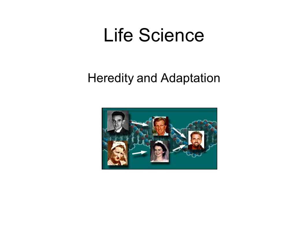 Heredity and Adaptation