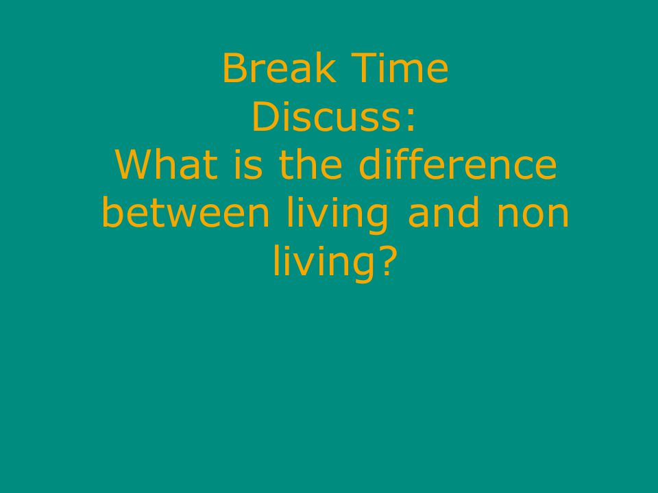 Break Time Discuss: What is the difference between living and non living