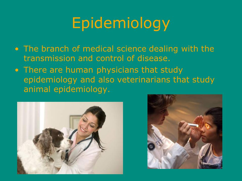 Epidemiology The branch of medical science dealing with the transmission and control of disease.