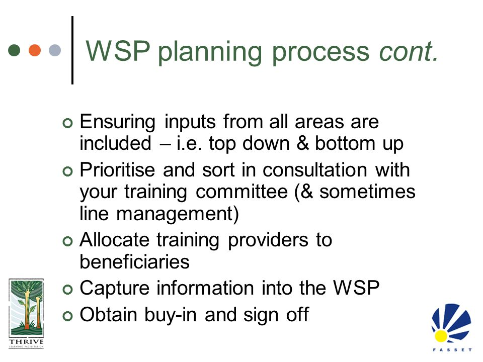 WSP planning process cont.
