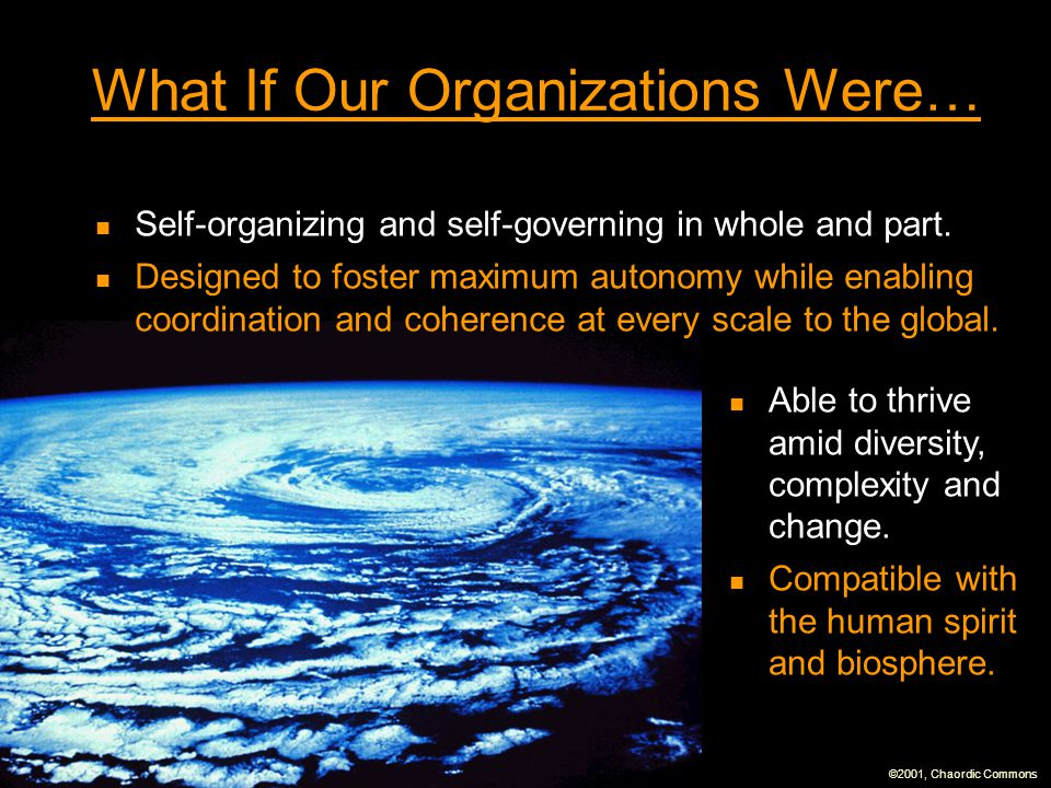 What If Our Organizations Were…