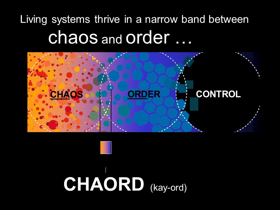 chaos and order … CHAORD (kay-ord)
