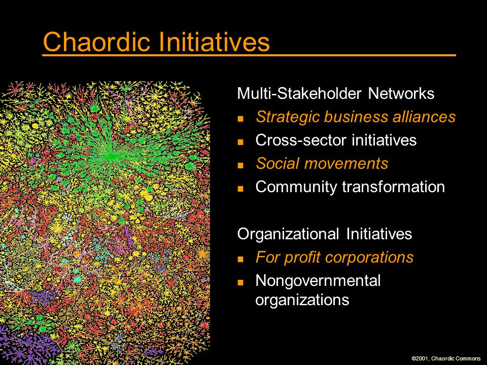Chaordic Initiatives Multi-Stakeholder Networks