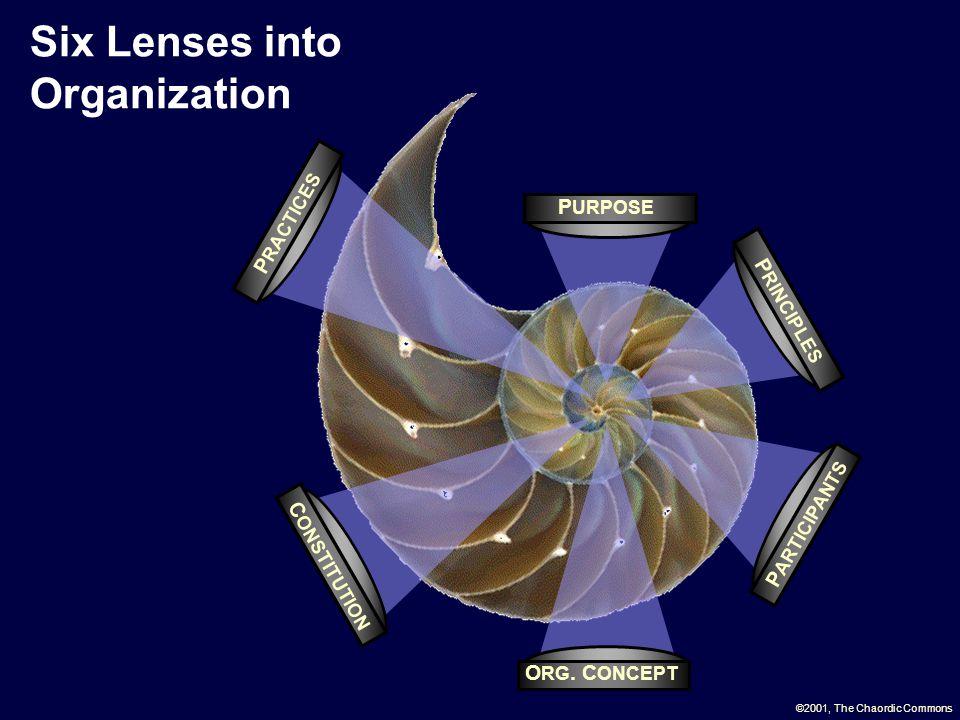 Six Lenses into Organization