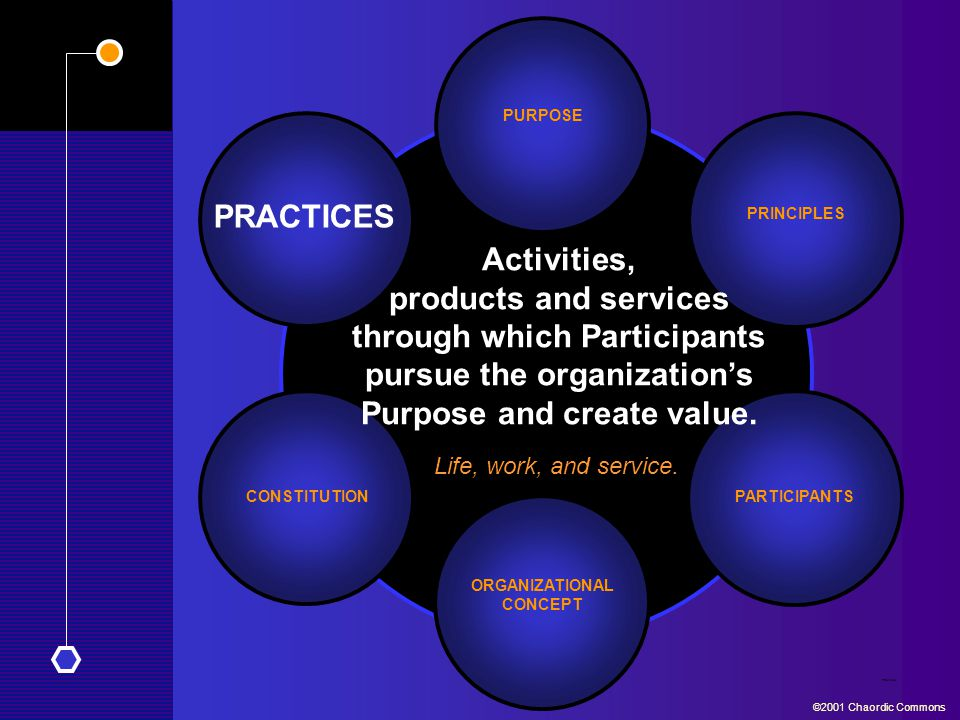 PURPOSE PRACTICES. PRINCIPLES. Activities, products and services through which Participants pursue the organization's Purpose and create value.
