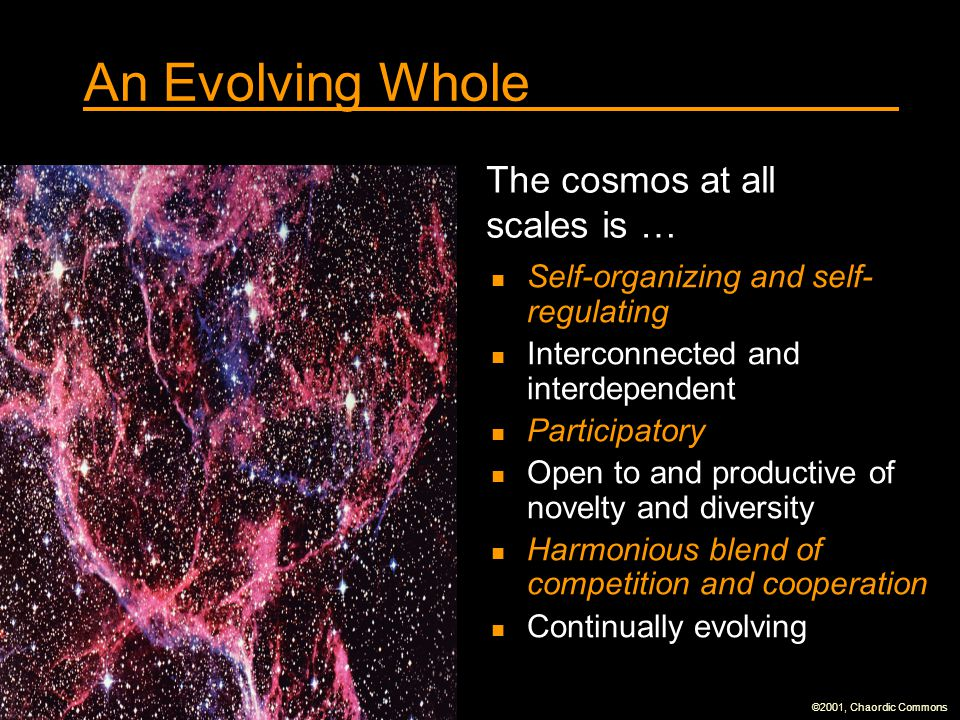 An Evolving Whole The cosmos at all scales is …