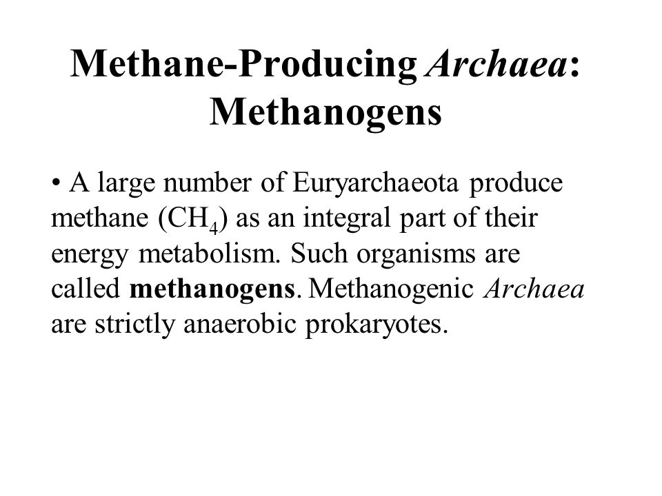 Methane-Producing Archaea: Methanogens