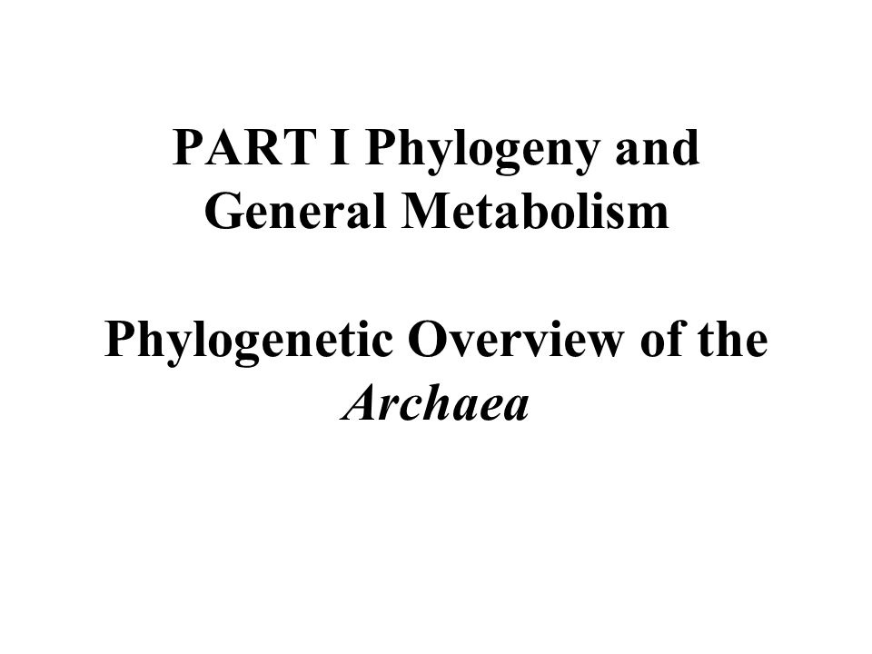 PART I Phylogeny and General Metabolism Phylogenetic Overview of the Archaea