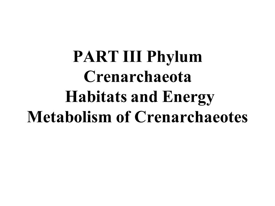 PART III Phylum Crenarchaeota Habitats and Energy Metabolism of Crenarchaeotes