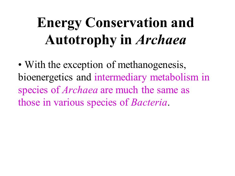 Energy Conservation and Autotrophy in Archaea
