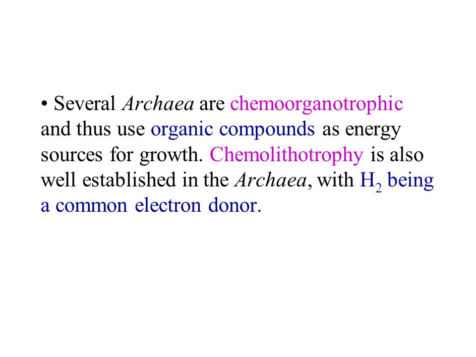 Several Archaea are chemoorganotrophic and thus use organic compounds as energy sources for growth.