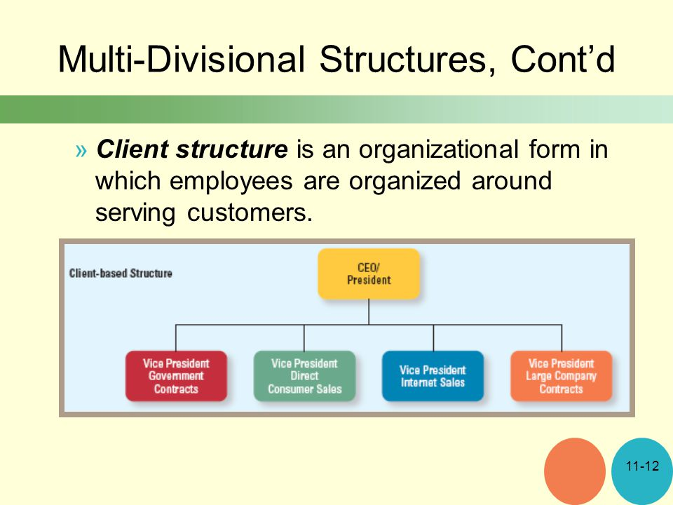 Multi-Divisional Structures, Cont'd