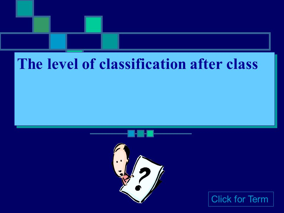 The level of classification after class