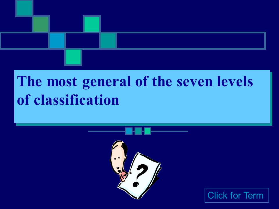 The most general of the seven levels of classification