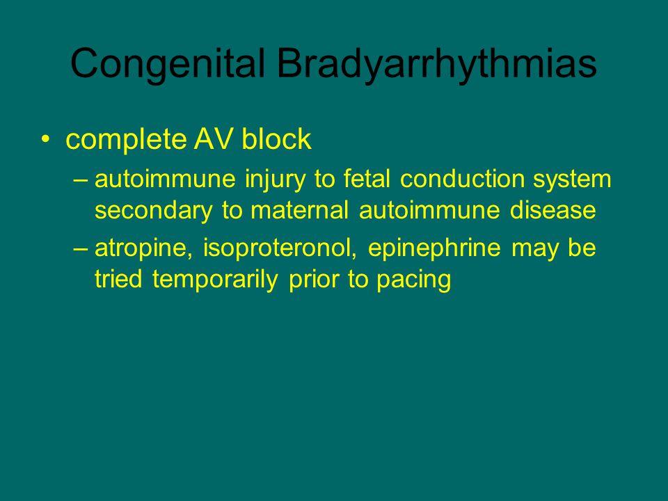 Congenital Bradyarrhythmias