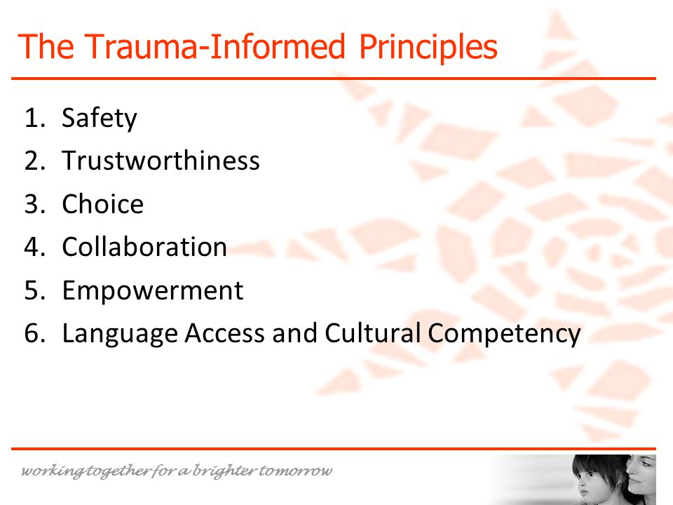 The Trauma-Informed Principles