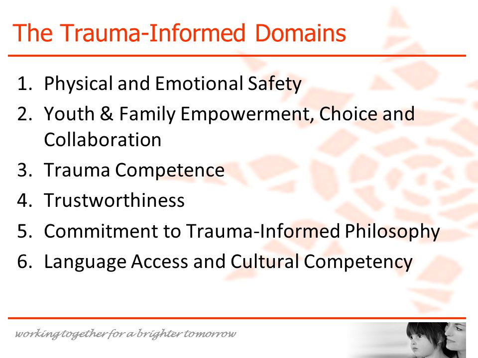 The Trauma-Informed Domains