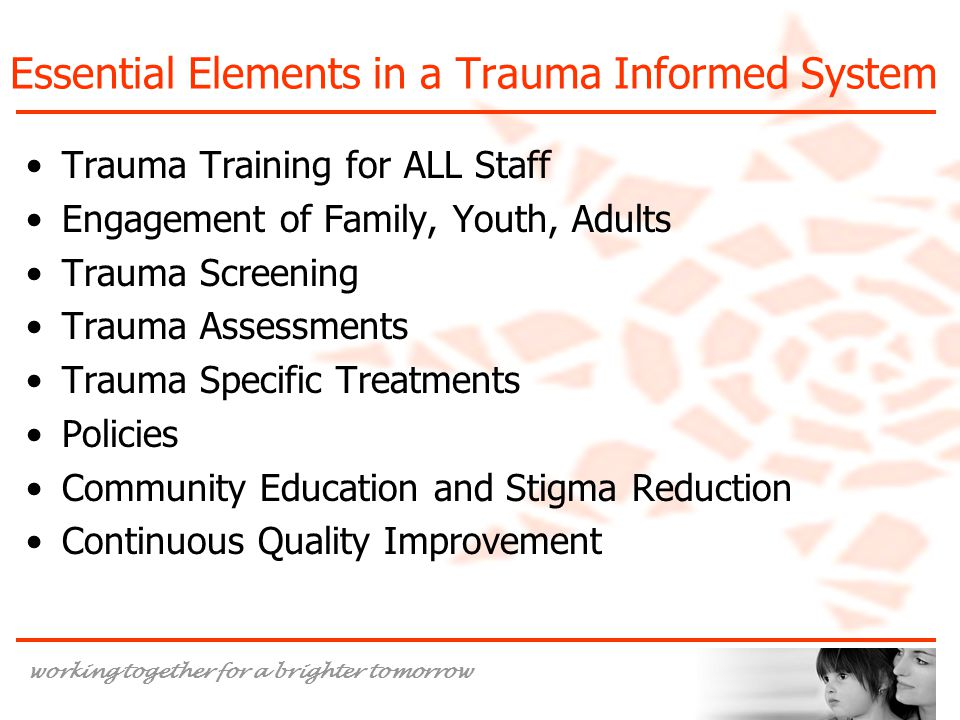 Essential Elements in a Trauma Informed System
