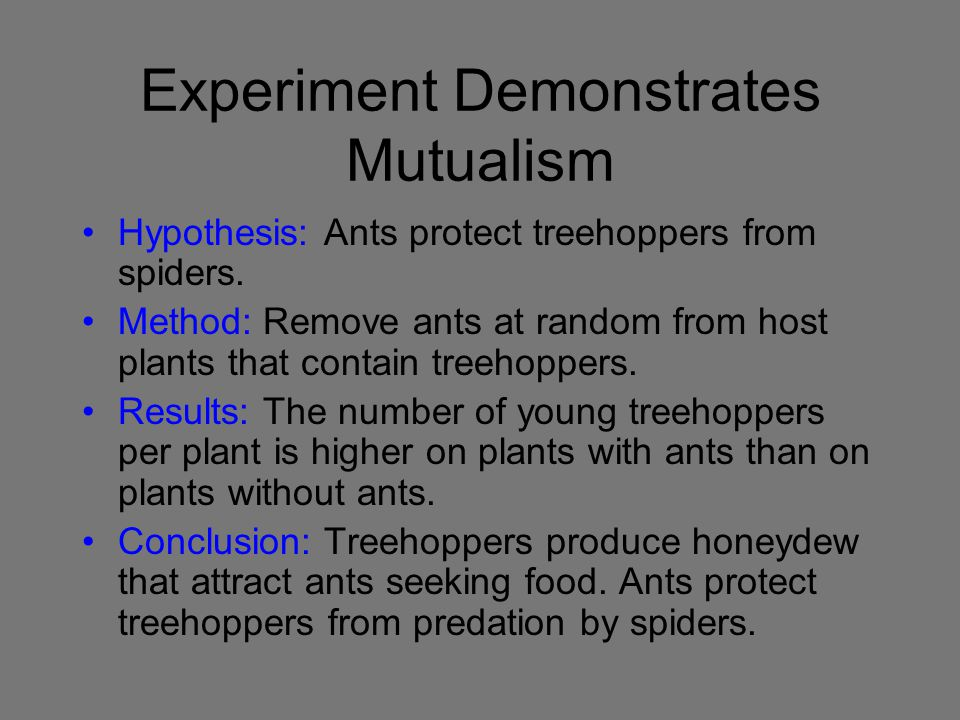 Experiment Demonstrates Mutualism