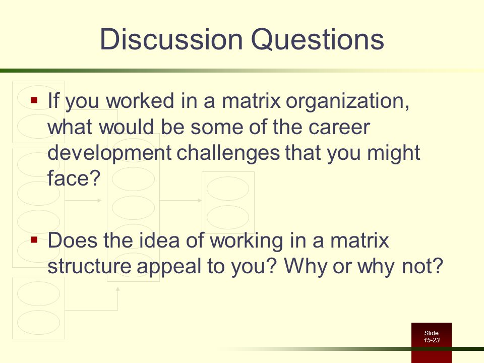 Discussion Questions If you worked in a matrix organization, what would be some of the career development challenges that you might face