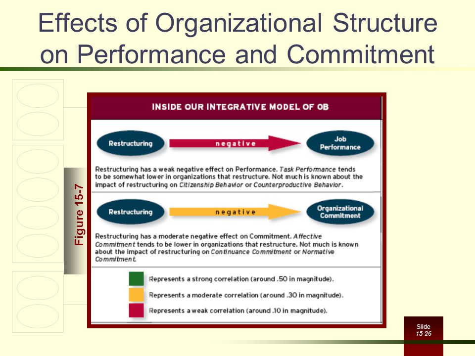 Effects of Organizational Structure on Performance and Commitment