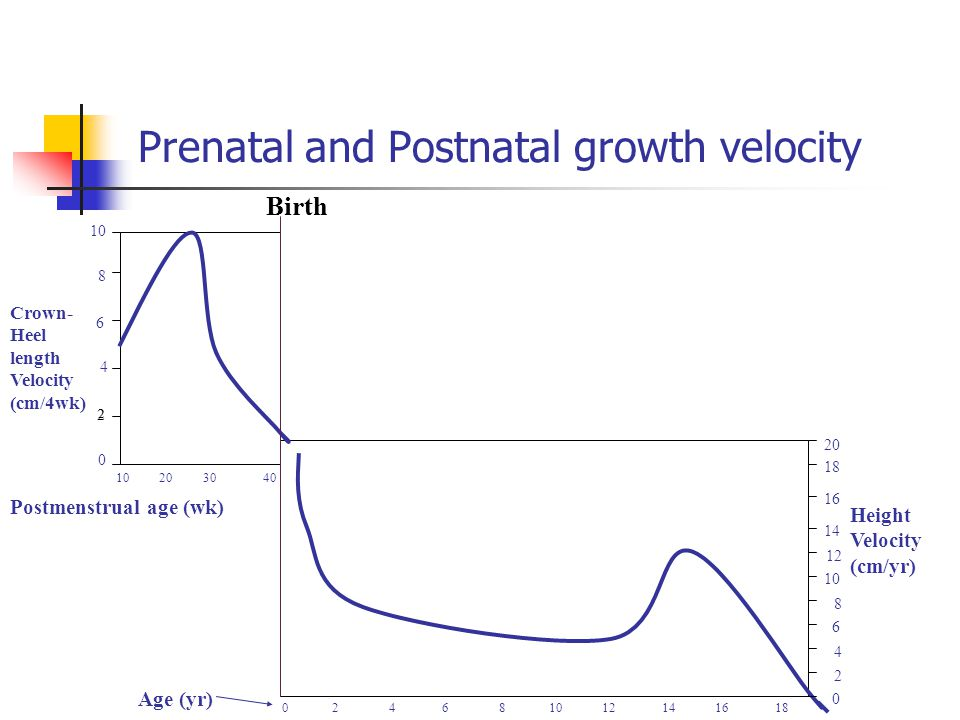 Prenatal and Postnatal growth velocity