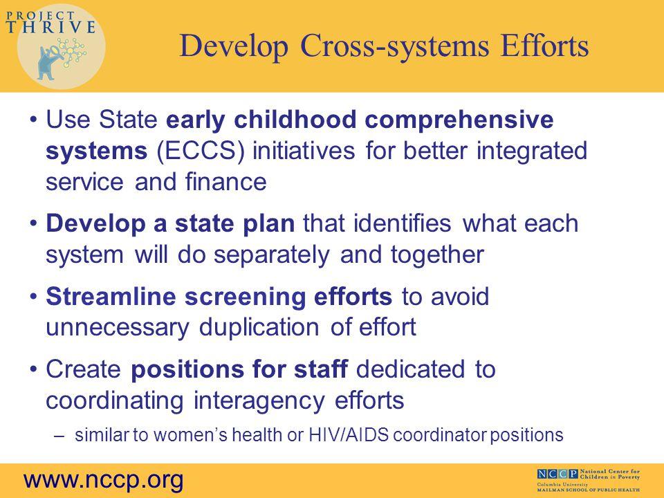 Develop Cross-systems Efforts