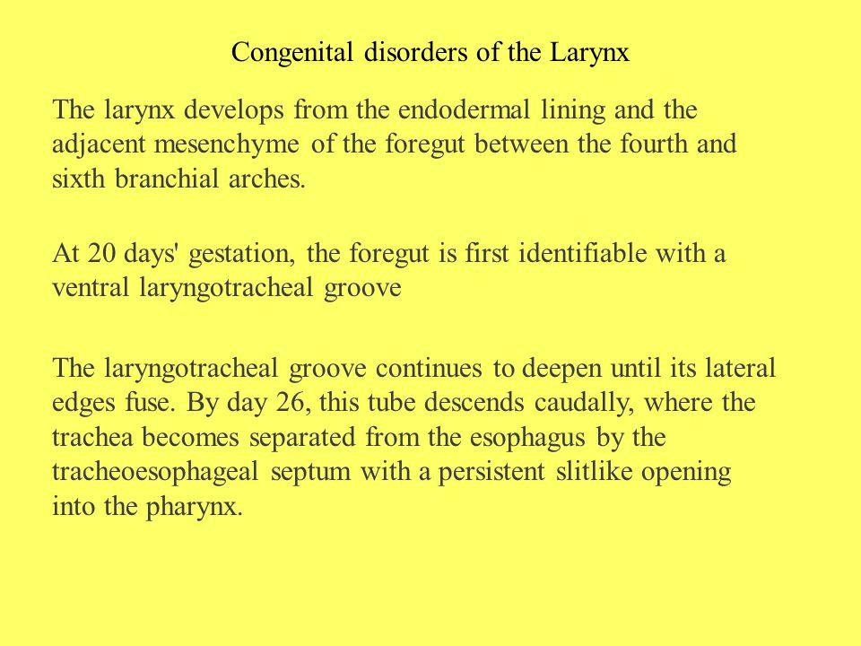 Congenital disorders of the Larynx