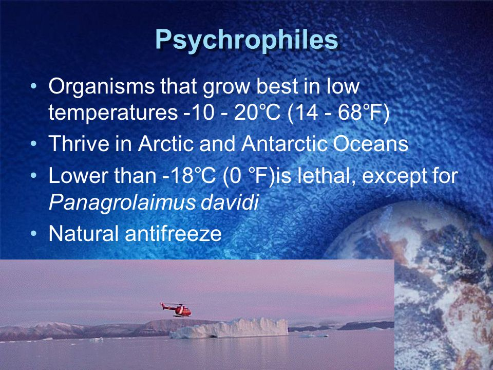 Psychrophiles Organisms that grow best in low temperatures -10 - 20℃ (14 - 68℉) Thrive in Arctic and Antarctic Oceans.