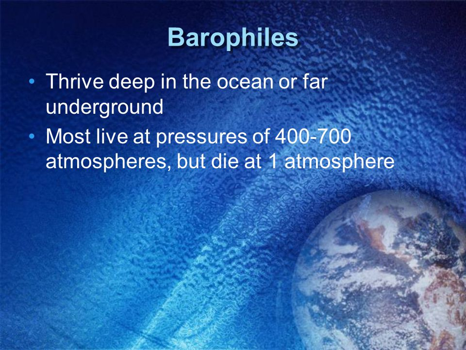 Barophiles Thrive deep in the ocean or far underground