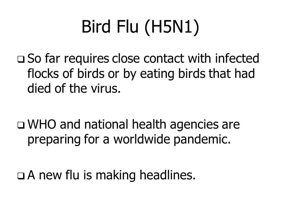 Bird Flu (H5N1) So far requires close contact with infected flocks of birds or by eating birds that had died of the virus.