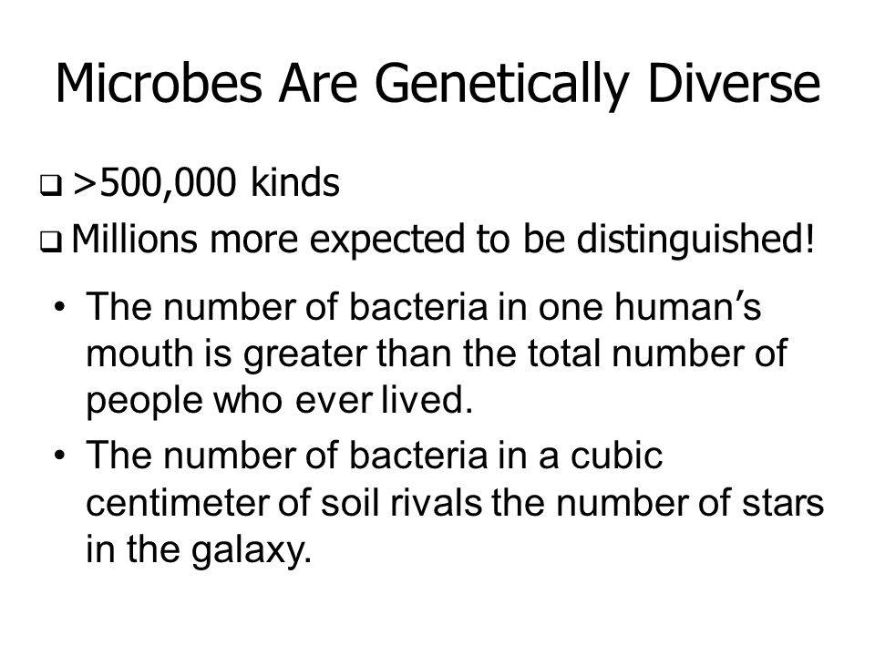 Microbes Are Genetically Diverse