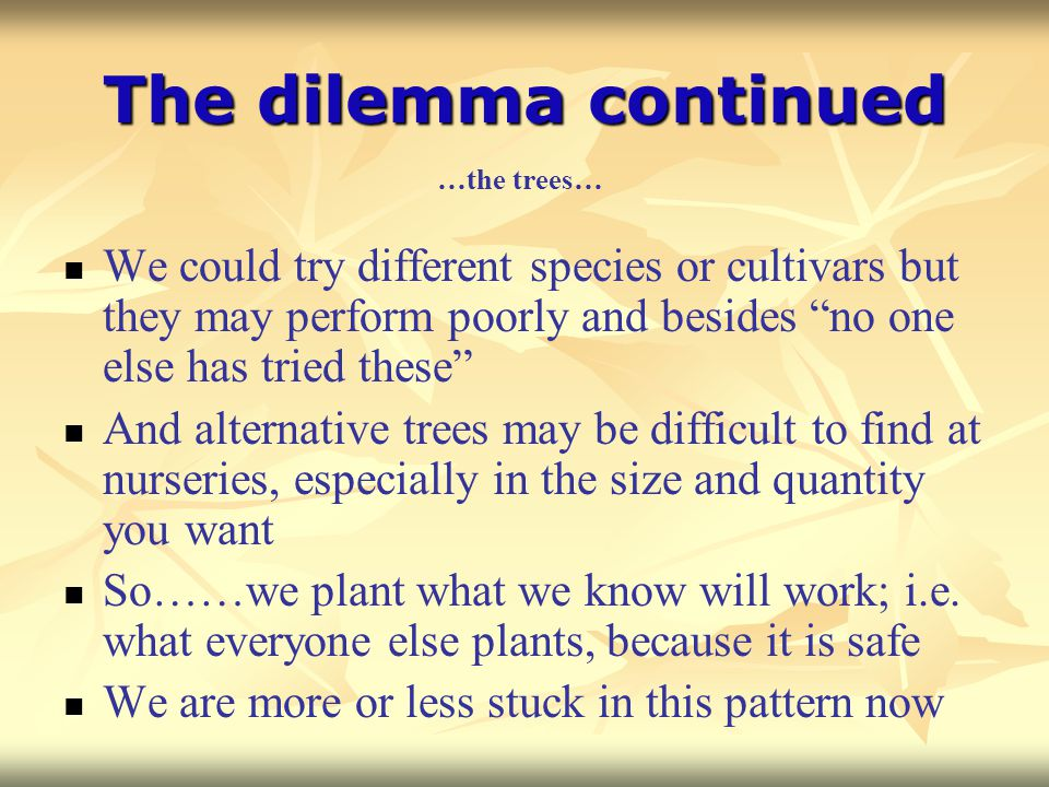 The dilemma continued …the trees… We could try different species or cultivars but they may perform poorly and besides no one else has tried these