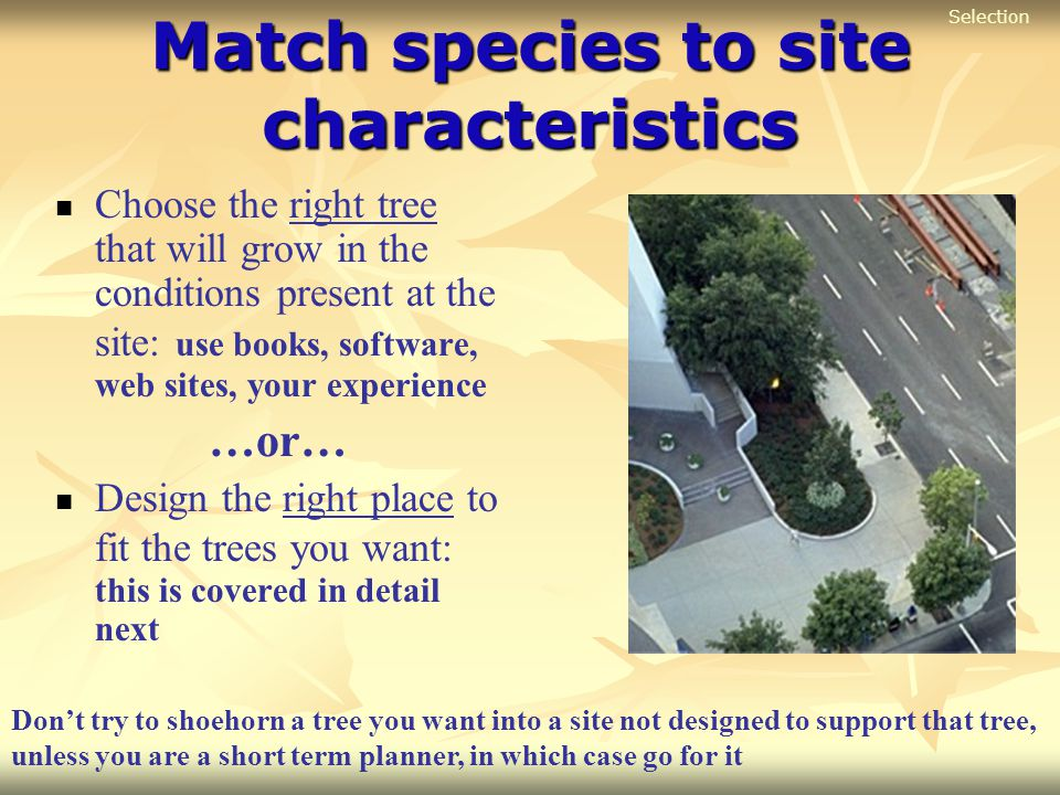 Match species to site characteristics