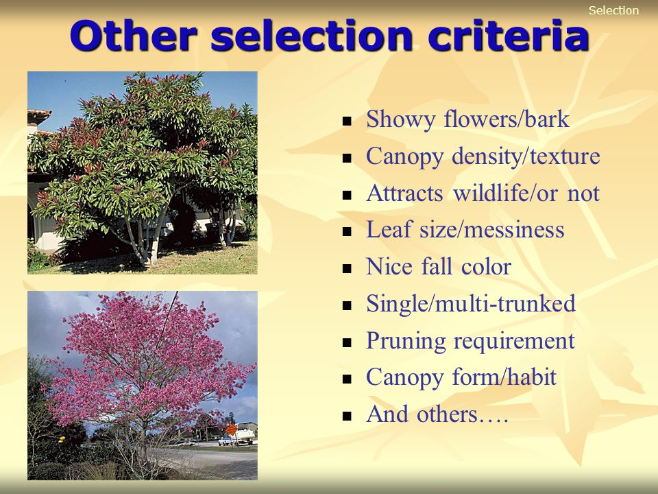 Other selection criteria
