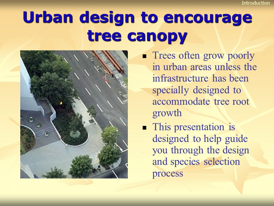 Urban design to encourage tree canopy