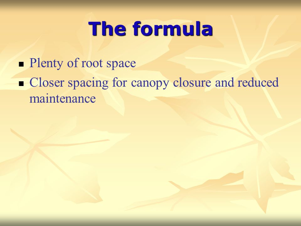 The formula Plenty of root space