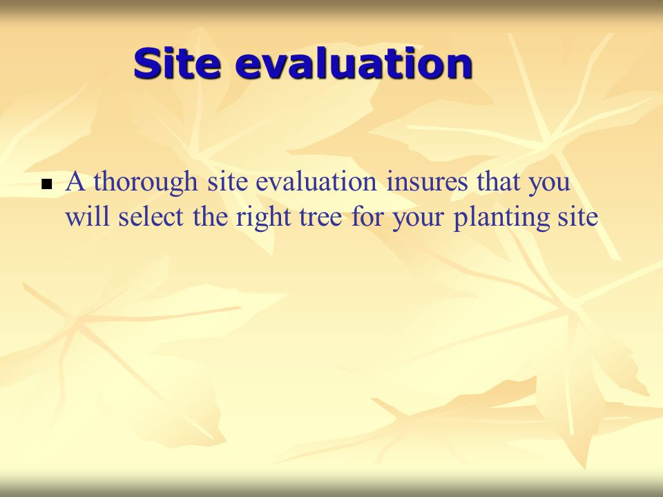 Site evaluation A thorough site evaluation insures that you will select the right tree for your planting site.