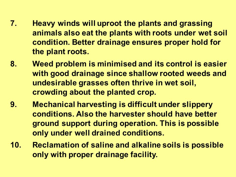 7. Heavy winds will uproot the plants and grassing animals also eat the plants with roots under wet soil condition. Better drainage ensures proper hold for the plant roots.